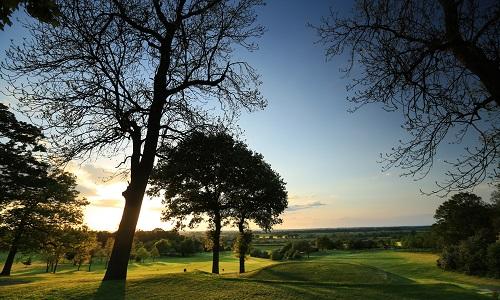 Thonock Park Golf buggy